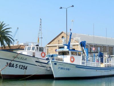 Fishing boats guided tour